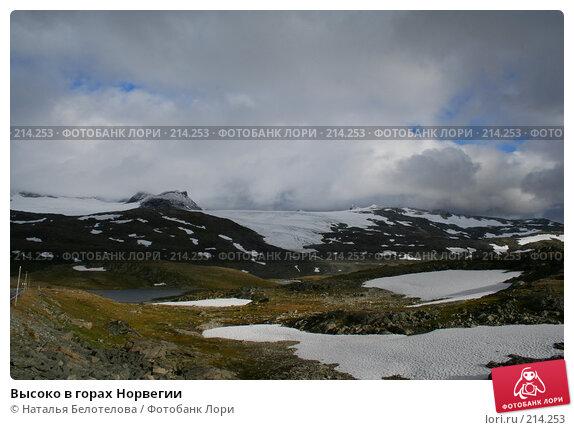 Высоко в горах Норвегии, фото № 214253, снято 28 августа 2007 г. (c) Наталья Белотелова / Фотобанк Лори