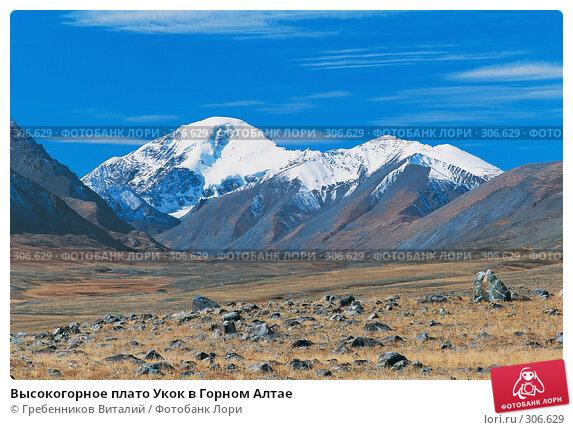 Высокогорное плато Укок в Горном Алтае, фото № 306629, снято 17 января 2017 г. (c) Гребенников Виталий / Фотобанк Лори