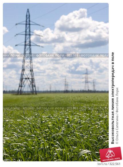 Высоковольтная линия электропередач в поле, фото № 322561, снято 20 июня 2007 г. (c) Ольга Сапегина / Фотобанк Лори