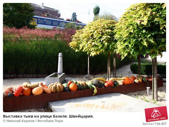 Выставка тыкв на улице Базеля. Швейцария., фото № 136457, снято 17 сентября 2006 г. (c) Николай Коржов / Фотобанк Лори