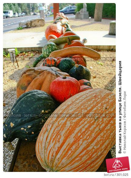 Выставка тыкв на улице Базеля. Швейцария, фото № 301025, снято 17 сентября 2006 г. (c) Николай Коржов / Фотобанк Лори
