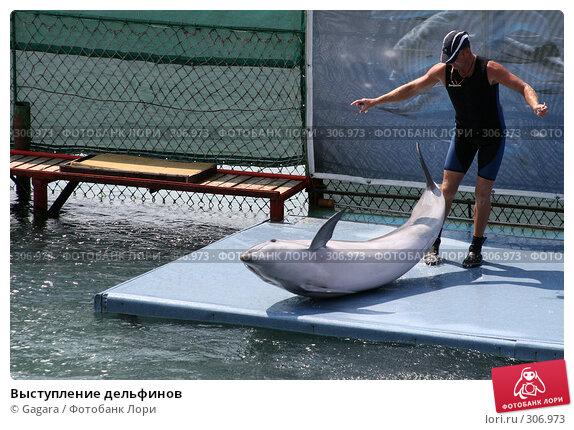 Купить «Выступление дельфинов», фото № 306973, снято 1 июля 2006 г. (c) Gagara / Фотобанк Лори