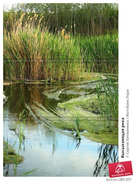 Высыхающая река, фото № 281977, снято 11 мая 2008 г. (c) Сергей Литвиненко / Фотобанк Лори