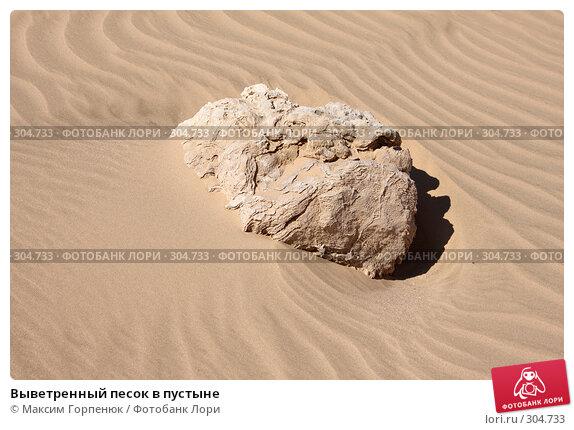 Выветренный песок в пустыне, фото № 304733, снято 28 января 2008 г. (c) Максим Горпенюк / Фотобанк Лори
