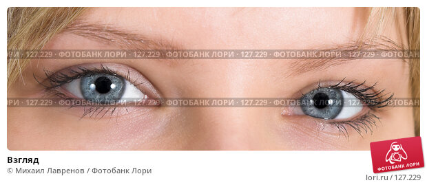 Купить «Взгляд», фото № 127229, снято 9 декабря 2005 г. (c) Михаил Лавренов / Фотобанк Лори