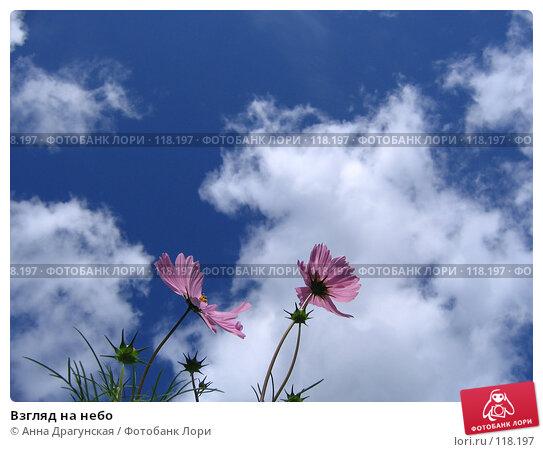 Взгляд на небо, фото № 118197, снято 27 августа 2007 г. (c) Анна Драгунская / Фотобанк Лори