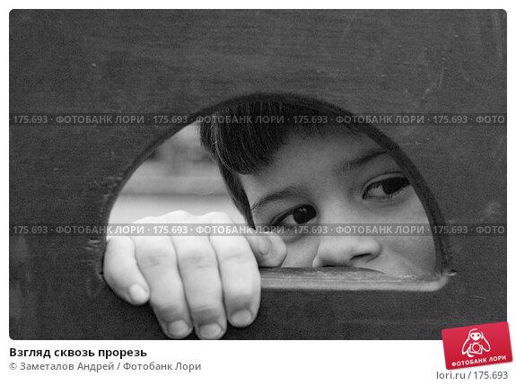 Взгляд сквозь прорезь, фото № 175693, снято 22 октября 2007 г. (c) Заметалов Андрей / Фотобанк Лори