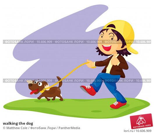 walking the dog. Стоковая иллюстрация, иллюстратор Matthew Cole / PantherMedia / Фотобанк Лори