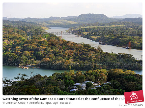 Купить «watching tower of the Gamboa Resort situated at the confluence of the Chagres River and the Canal, Republic of Panama, Central America», фото № 13660625, снято 19 февраля 2019 г. (c) age Fotostock / Фотобанк Лори