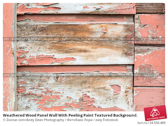 Weathered Wood Panel Wall With Peeling Paint Textured Background. Стоковое фото, фотограф Zoonar.com/Andy Dean Photography / easy Fotostock / Фотобанк Лори