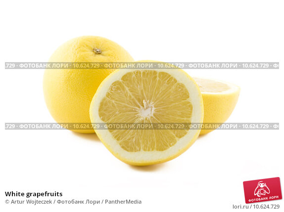 White grapefruits. Стоковое фото, фотограф Artur Wojteczek / PantherMedia / Фотобанк Лори