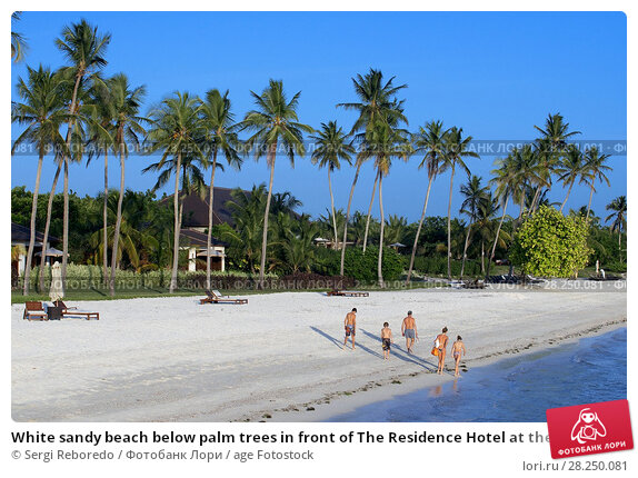 Купить «White sandy beach below palm trees in front of The Residence Hotel at the Indian Ocean Zanzibar Tanzania.», фото № 28250081, снято 10 января 2018 г. (c) age Fotostock / Фотобанк Лори