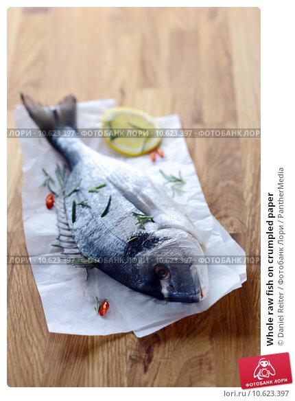 Whole raw fish on crumpled paper. Стоковое фото, фотограф Daniel Reiter / PantherMedia / Фотобанк Лори
