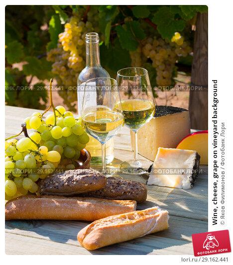 Купить «Wine, cheese, grape on vineyard background», фото № 29162441, снято 24 февраля 2019 г. (c) Яков Филимонов / Фотобанк Лори