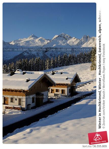 Winter in Hochkrimml, Winter , Hochkrimml, österreich, alpen, schnee... Стоковое фото, фотограф Zoonar.com/Volker Rauch / easy Fotostock / Фотобанк Лори