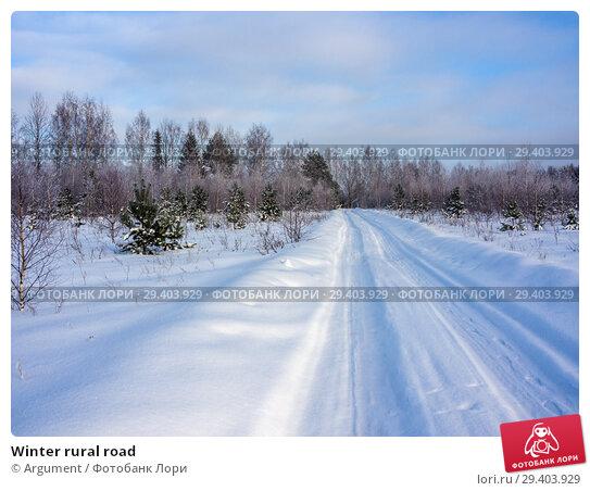 Купить «Winter rural road», фото № 29403929, снято 25 января 2013 г. (c) Argument / Фотобанк Лори