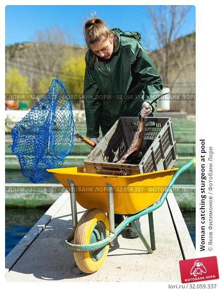 Woman catching sturgeon at pool. Стоковое фото, фотограф Яков Филимонов / Фотобанк Лори