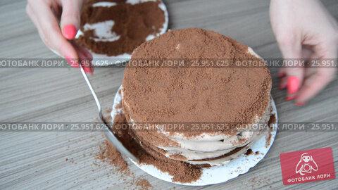 Купить «Woman covers cake with biscuit crumbs», видеоролик № 25951625, снято 19 марта 2017 г. (c) Володина Ольга / Фотобанк Лори