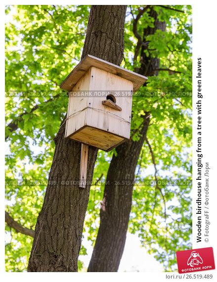 Купить «Wooden birdhouse hanging from a tree with green leaves», фото № 26519489, снято 28 мая 2017 г. (c) FotograFF / Фотобанк Лори