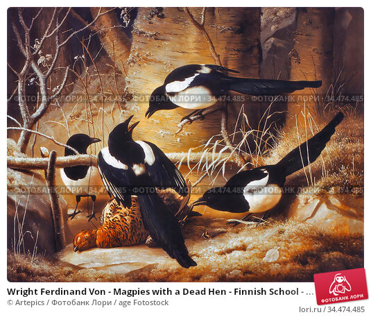 Wright Ferdinand Von - Magpies with a Dead Hen - Finnish School - ... Редакционное фото, фотограф Artepics / age Fotostock / Фотобанк Лори
