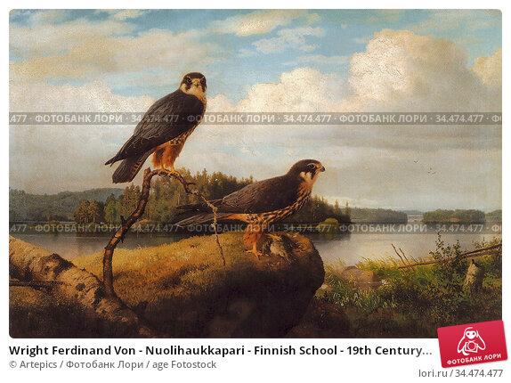 Wright Ferdinand Von - Nuolihaukkapari - Finnish School - 19th Century... Редакционное фото, фотограф Artepics / age Fotostock / Фотобанк Лори