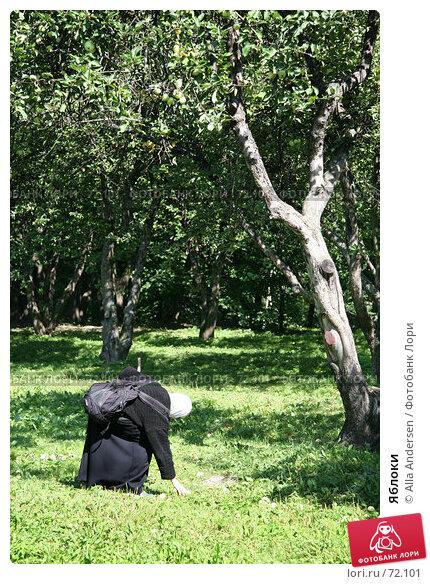 Яблоки, фото № 72101, снято 12 августа 2007 г. (c) Alla Andersen / Фотобанк Лори