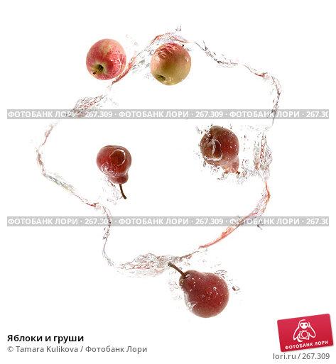 Яблоки и груши, фото № 267309, снято 3 декабря 2016 г. (c) Tamara Kulikova / Фотобанк Лори