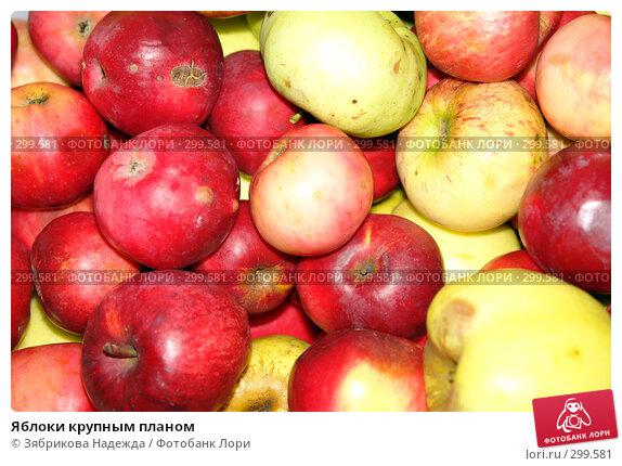 Купить «Яблоки крупным планом», фото № 299581, снято 17 октября 2006 г. (c) Зябрикова Надежда / Фотобанк Лори