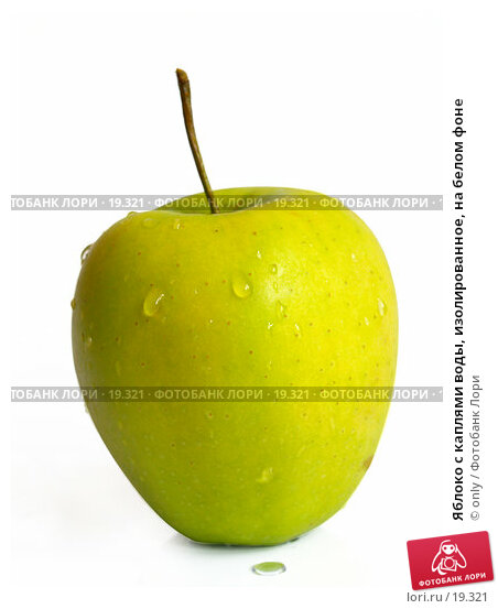 Купить «Яблоко с каплями воды, изолированное, на белом фоне», фото № 19321, снято 14 февраля 2007 г. (c) only / Фотобанк Лори