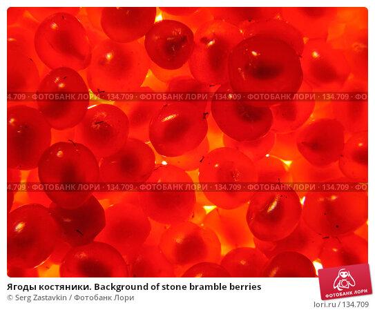 Ягоды костяники. Background of stone bramble berries, фото № 134709, снято 30 июля 2005 г. (c) Serg Zastavkin / Фотобанк Лори