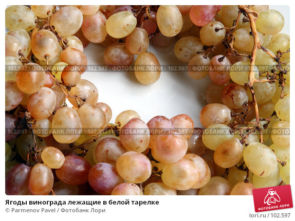 Купить «Ягоды винограда лежащие в белой тарелке», фото № 102597, снято 20 марта 2018 г. (c) Parmenov Pavel / Фотобанк Лори