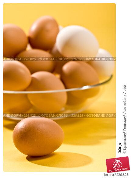 Купить «Яйца», фото № 226825, снято 26 сентября 2005 г. (c) Кравецкий Геннадий / Фотобанк Лори
