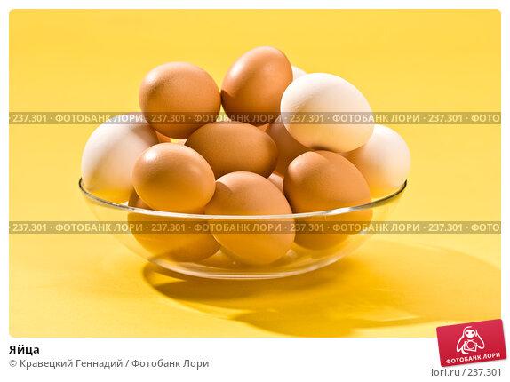 Яйца, фото № 237301, снято 23 октября 2016 г. (c) Кравецкий Геннадий / Фотобанк Лори