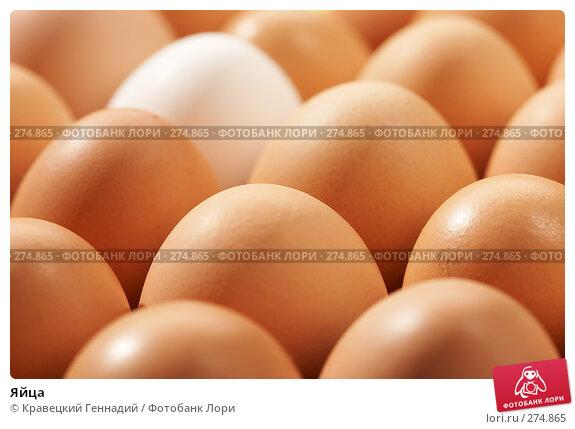 Яйца, фото № 274865, снято 26 сентября 2005 г. (c) Кравецкий Геннадий / Фотобанк Лори