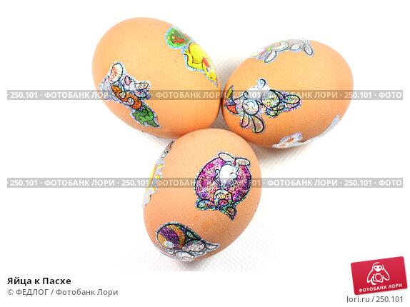 Купить «Яйца к Пасхе», фото № 250101, снято 13 апреля 2008 г. (c) ФЕДЛОГ.РФ / Фотобанк Лори