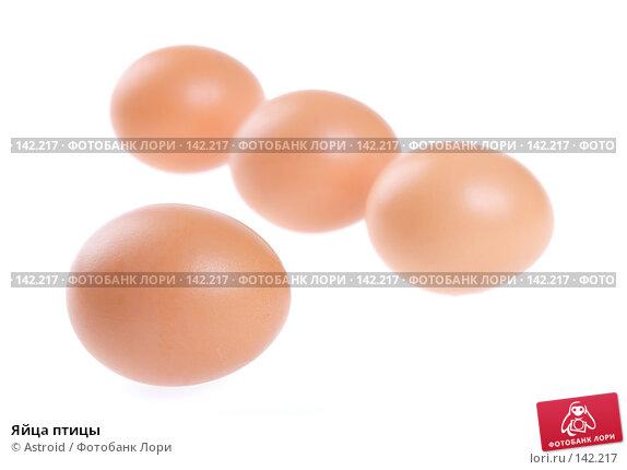 Яйца птицы, фото № 142217, снято 5 января 2007 г. (c) Astroid / Фотобанк Лори