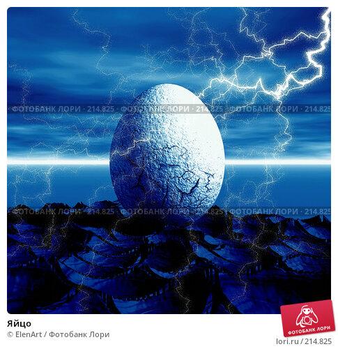 Купить «Яйцо», иллюстрация № 214825 (c) ElenArt / Фотобанк Лори