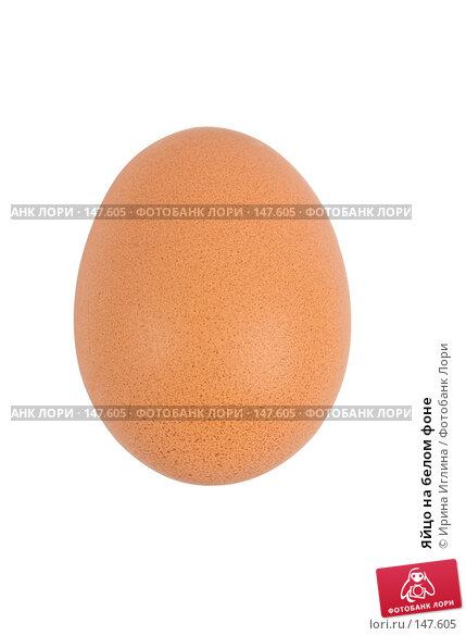 Купить «Яйцо на белом фоне», фото № 147605, снято 4 декабря 2007 г. (c) Ирина Иглина / Фотобанк Лори