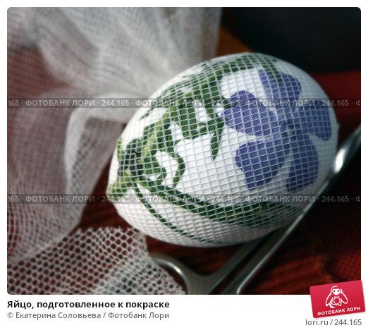 Купить «Яйцо, подготовленное к покраске», фото № 244165, снято 19 марта 2008 г. (c) Екатерина Соловьева / Фотобанк Лори