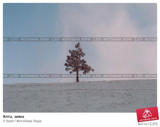 Ялта, зима, фото № 2373, снято 22 октября 2016 г. (c) Estet / Фотобанк Лори