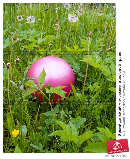 Яркий детский мяч лежит в зеленой траве, фото № 277353, снято 11 июня 2006 г. (c) Анатолий Заводсков / Фотобанк Лори
