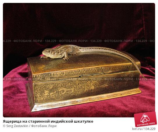 Ящерица на старинной индийской шкатулке, фото № 134229, снято 16 мая 2004 г. (c) Serg Zastavkin / Фотобанк Лори