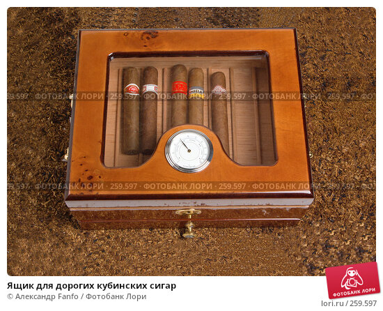 Ящик для дорогих кубинских сигар, фото № 259597, снято 24 июня 2017 г. (c) Александр Fanfo / Фотобанк Лори