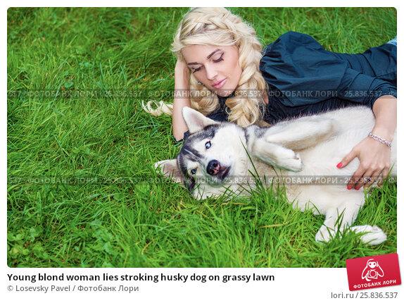 Купить «Young blond woman lies stroking husky dog on grassy lawn», фото № 25836537, снято 23 июля 2015 г. (c) Losevsky Pavel / Фотобанк Лори