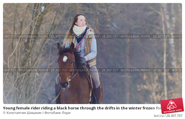 Купить «Young female rider riding a black horse through the drifts in the winter frozen forest», фото № 28307757, снято 21 апреля 2018 г. (c) Константин Шишкин / Фотобанк Лори
