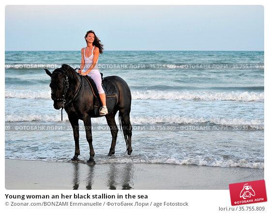 Young woman an her black stallion in the sea. Стоковое фото, фотограф Zoonar.com/BONZAMI Emmanuelle / age Fotostock / Фотобанк Лори