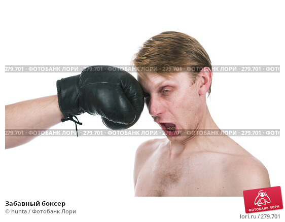 Забавный боксер, фото № 279701, снято 13 декабря 2007 г. (c) hunta / Фотобанк Лори