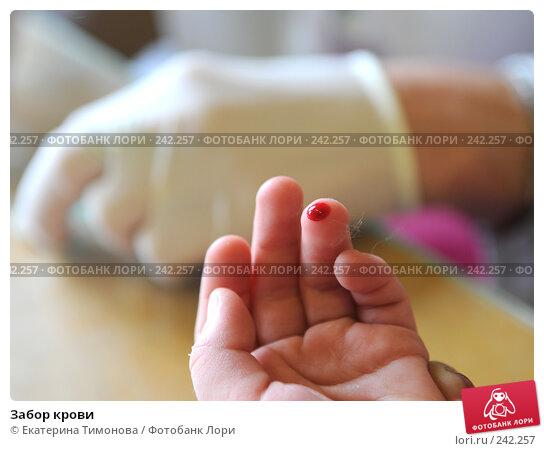 Забор крови, фото № 242257, снято 27 мая 2017 г. (c) Екатерина Тимонова / Фотобанк Лори