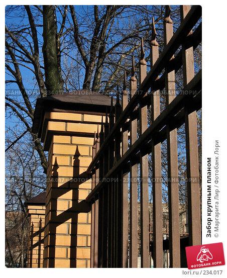 Забор крупным планом, фото № 234017, снято 6 марта 2008 г. (c) Маргарита Лир / Фотобанк Лори