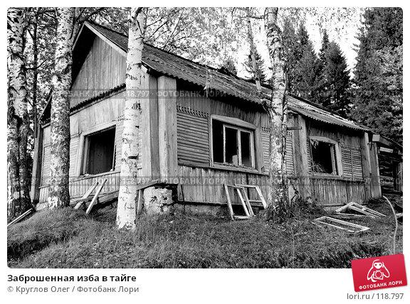 Заброшенная изба в тайге, фото № 118797, снято 5 июня 2007 г. (c) Круглов Олег / Фотобанк Лори